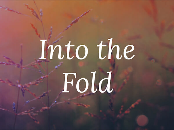 into-the-fold-preview
