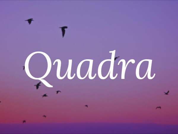 quadra-preview